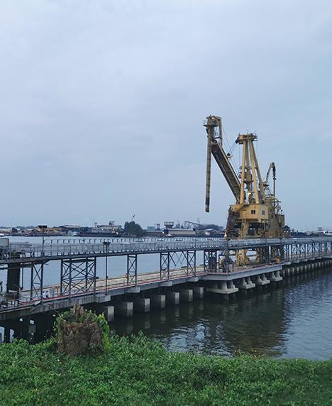 马来西亚马来亚面粉厂