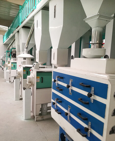 河南驻马店市先锋粮油储运有限公司日处理60吨谷子精制小米加工项目